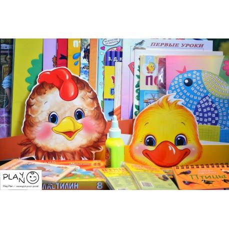 Набор игр для детей для изучения птиц