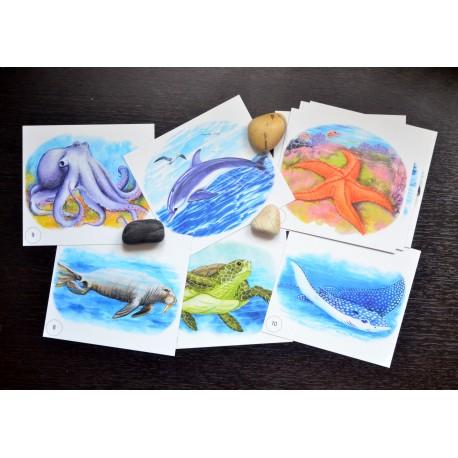 Карточки в наборе Морской для детей 4-7 лет